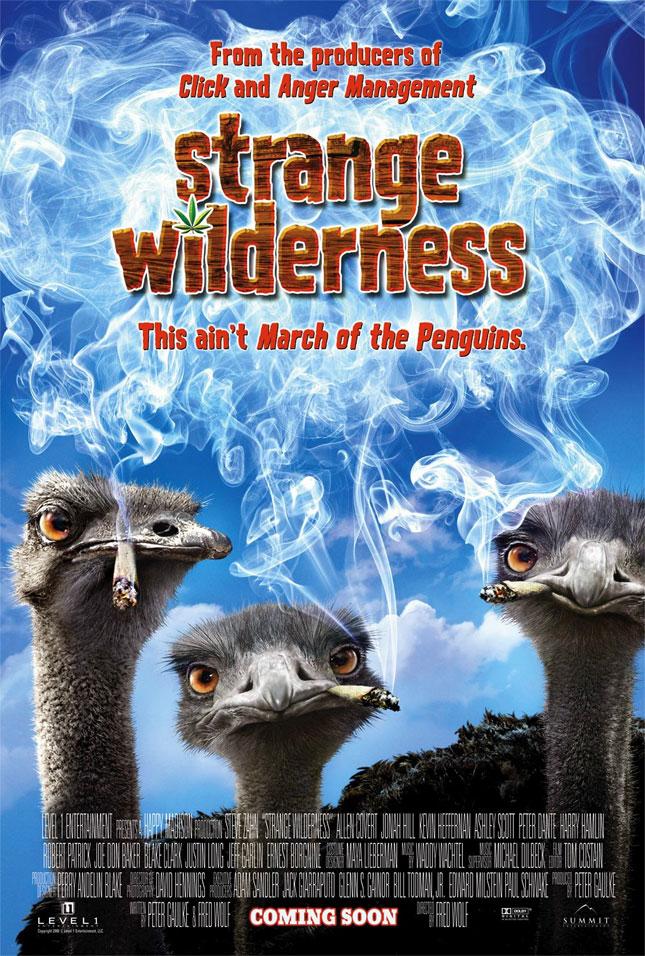 STRANGE WILDERNESS - 2008'de Vizyona girecek fiLmLer hakk�nda ki biLgiLer ve afi�Leri